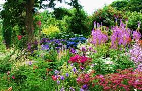 Small Picture Stylish Cottage Garden Cottage Garden Ideas Uk gardensdecorcom