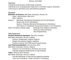 Things To Put On A Resume What To Put In On A Resume Template Elegant Skills Inspire How 39