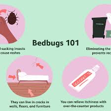 Download Bed Bugs Bites Gif