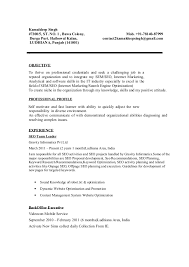 Search Engine Marketing Resume Sample