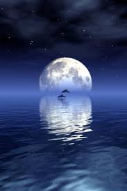 beautiful view with a big moon android wallpapers htc t mobile g2 g1 wallpapers free
