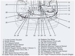 2003 toyota camry drive belt diagram serpentine belt routing diagram 2008 toyota camry serpentine belt diagram various information and rhkgmsa 2003 toyota camry serpentine belt 2003