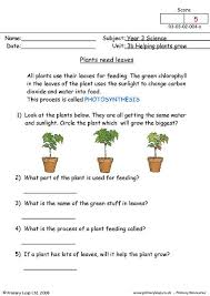 This collection of plant worksheets will you help you better understand the plant kingdom. Science How Do Plants Grow Worksheet Primaryleap Co Uk
