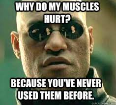 Why do my muscles hurt? because you've never used them before ... via Relatably.com