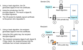 Digital Certificates With Pki Overview Techlibrary Juniper Networks