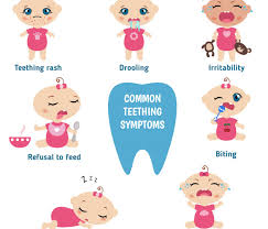 Image result for teething