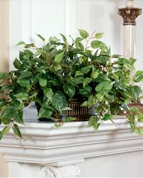 plants for office cubicle. Office Greenery. Silk Pothos In Oval Planter Greenery Plants For Cubicle