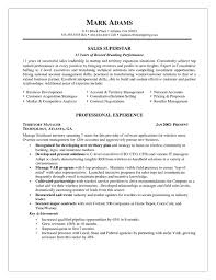 Account Representative Sample Resume 14 Sales Manager Example
