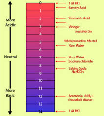 Ph Concepts Ph Indicators Examples With Questions Videos