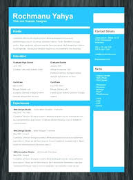 Professional Resume Template Word Adorable 48 Page Professional Resume Template Simple Title One Modclothingco