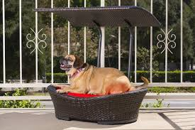 wicker outdoor dog bed with canopy
