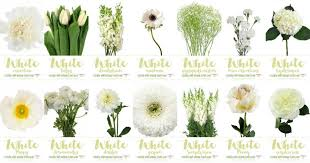 flowers types for weddings white wedding flowers guide types of white flowers names pics ideas