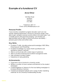 Cv Writing Examples Personal Profile 12 Accounting Professional Summary Examples Auterive31 Com