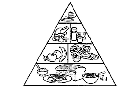 Small Picture Food Pyramid Coloring Pages for Kids Download Print Online