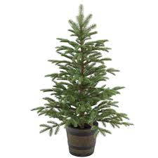 National Tree Company 4 ft. Glittery Gold Pine Entrance Artificial ...