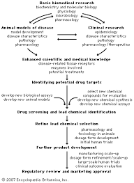 Clinical Trial Process Flow Chart Ppt Pharmaceutical Industry Drug Discovery And Development
