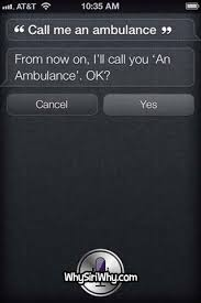 Siri Quote New Top 48 Funniest SIRI Quotes POPHANGOVER