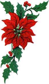 animated-christmas-flower-image-0035