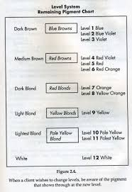Color Formulation Chart Pin On Hair Design