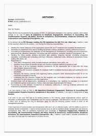 Outline Format Resume Best Reference Letter Examples For Employees