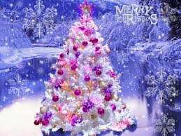 Beautiful Christmas Tree Wallpaper Android #7482 Wallpaper ...