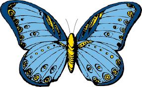 big pictures of butterflies. Unique Butterflies To Big Pictures Of Butterflies