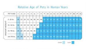 27 Reasonable Purina Dog Age Chart