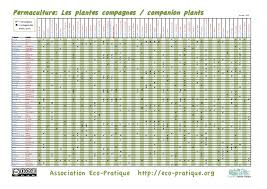 Companion Plants Chart Eco Pratique