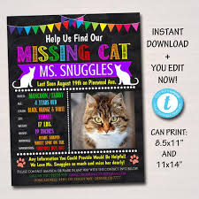 Lost Cat Flyer Editable Missing Cat Flyer And Poster Template Printable