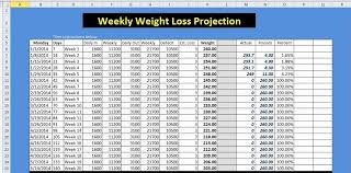 Ageless Excel Chart For Weight Loss Free Weight Loss Chart