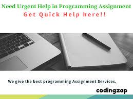 urgent programming assignment help quick programming assignment urgent programming assignment help