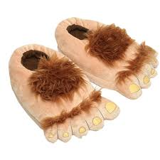 Image result for wig for feet