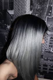 Ideal Hair Color Thundercloud Silver Took