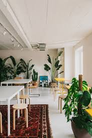 office greenery. Indoor Plants Bring Greenery To The Contemporary Office 1