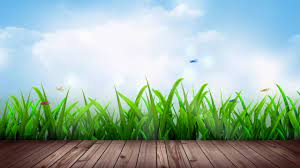 Natural Background Video Free Download ...