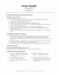 Sample Resume For Sales Custom Fashion Retail Resume Sample Inspirational Clothing Store Sales