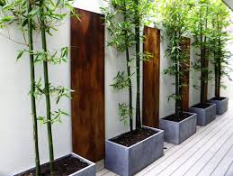 Vertical Garden Design Ideas Beauteous Tips To Add Drama To Your Walls