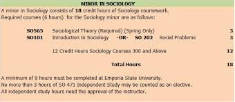 minor in sociology department of sociology anthropology and   religion medicine and government culture values norms symbols social problems crime juvenile delinquency poverty and discrimination