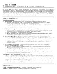 Promotional Resume Sample Business Hr Internal Auditor Promotion