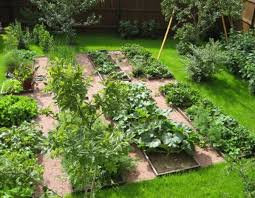 Small Picture Backyard Vegetable Garden Design Garden ideas and garden design