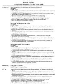 Director Of Security Resume Examples Director Information Security Resume Samples Velvet Jobs 13
