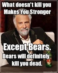 Meme Maker - What doesn't kill you Makes You Stronger Except Bears ... via Relatably.com