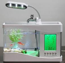 Bể Cá Mini Trang Trí Kèm Đồng Hồ Vạn Năng Và Đèn LED Phát Sáng,Sành Điệu  Cho Dân Văn Phòng - TP.Hồ Chí Minh - Five.vn