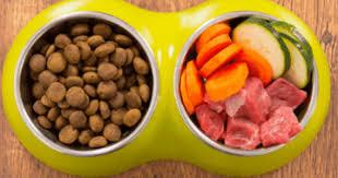 Blue buffalo life protection formula healthy. Low Fat Dog Food