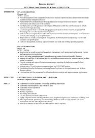 Sample Director Of Finance Resume Finance Director Resume Samples Velvet Jobs