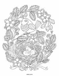 Small Picture Bird Nest Coloring Page Coloring234