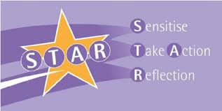 Star Framework The S T A R Framework Download Scientific Diagram