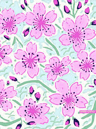 vs pink wallpapers on wallpaperdog
