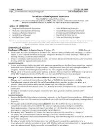 Sample Writer Resume Grant Writer Resume Writing Resume Sample For