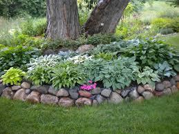 Landscaping around a tree | Yard ideas | Pinterest | Landscaping ideas,  Pine tree and Pine
